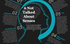 You Have More Than 5 Senses
