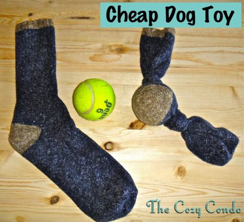 <>DIY DOG TOY<>