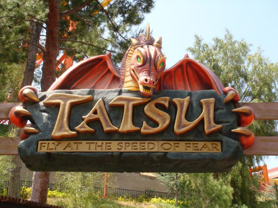 Tatsu Flying Roller Coaster Six Flags Magic Mountain Review!