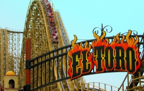 El Toro: A World Class Coaster at Six Flags Great Adventure in New Jersey.