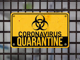 Fun Things To Do In Quarantine